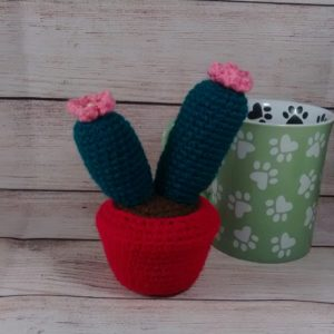 Twin Cactus Pink Flowers